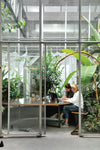Interior plants and design in a modern office