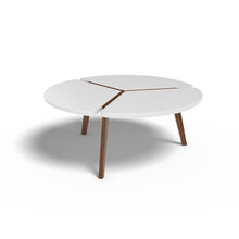 Galvin Coffee Table In Plywood And Duco Pain With 1000 Days Warranty