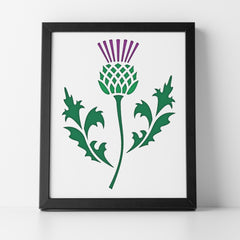 CraftStar Scottish Thistle Stencil - Framed Artwork