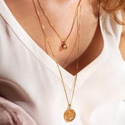 Petite Drop Necklace / Golden Shadow