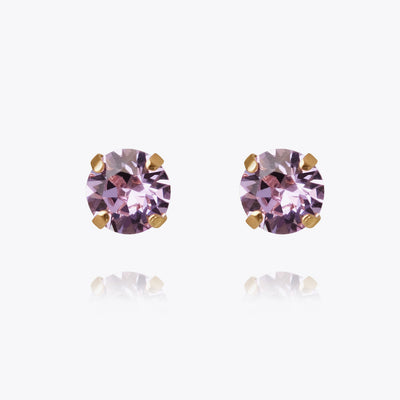 Classic Stud Earrings / Violet