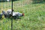 Electrifiable Poultry Netting