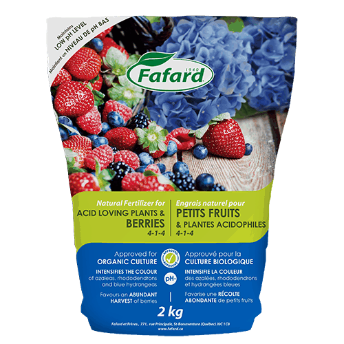 Fafard Soil for Berries and Acid Loving Plants -2KG