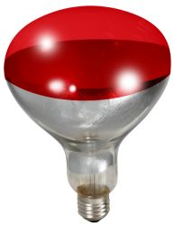 Red Heat Bulb, 2 Pack (150W or 175W)