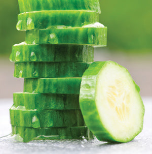 Halifax Seeds Tasty Green Hybrid Cucumber (Burpless), 5g