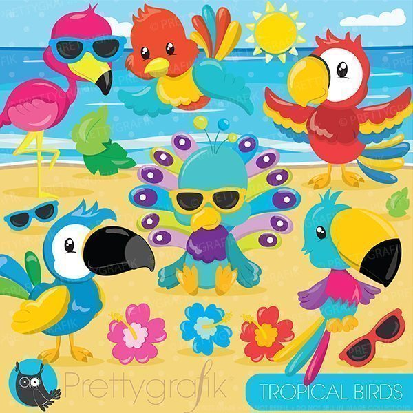 Tropical birds clipart  Prettygrafik    Mygrafico