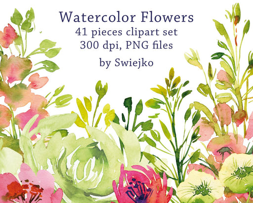 Watercolor Clipart, hand painted garden flowers, peony, ranunculus Cliparts Swiejko    Mygrafico