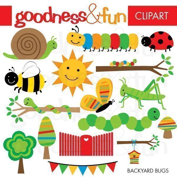 Backyard Bugs  Goodness & Fun    Mygrafico