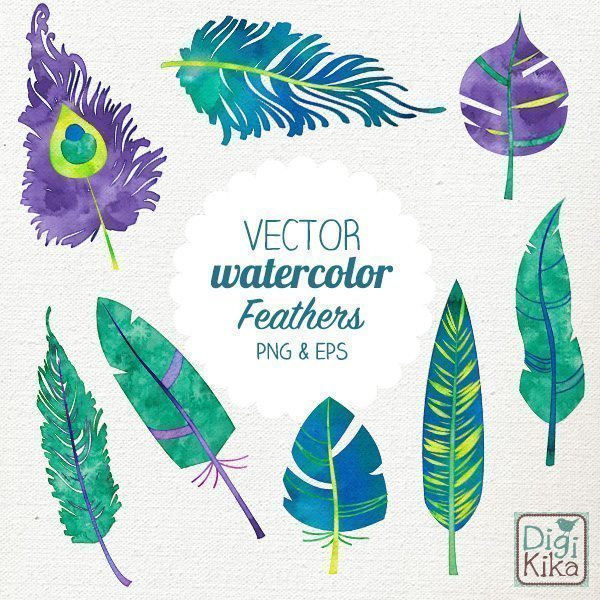 Vector Watercolor Feathers  Kika Digital    Mygrafico