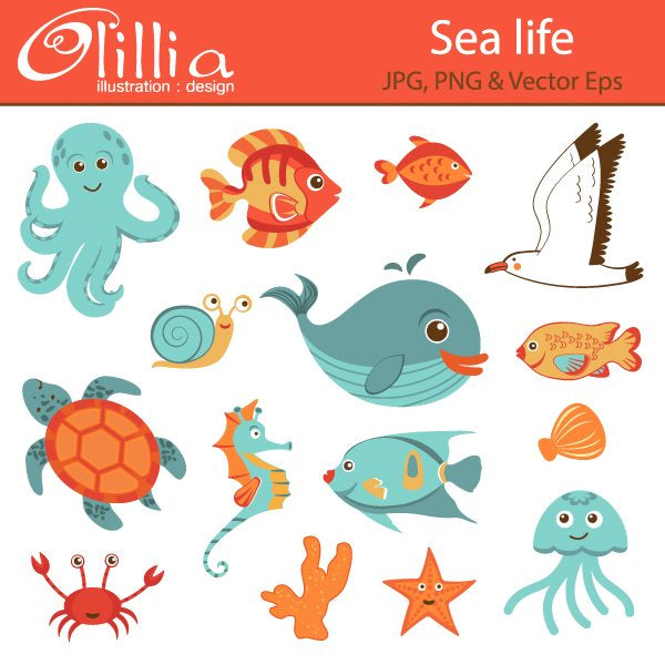 Sea_life  Olillia Illustration    Mygrafico