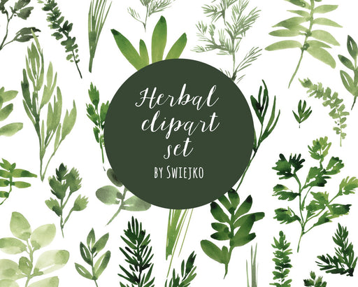 Digital Clipart, Watercolor Herbs, Hand Painted Leaves Basil, Sage, Thyme