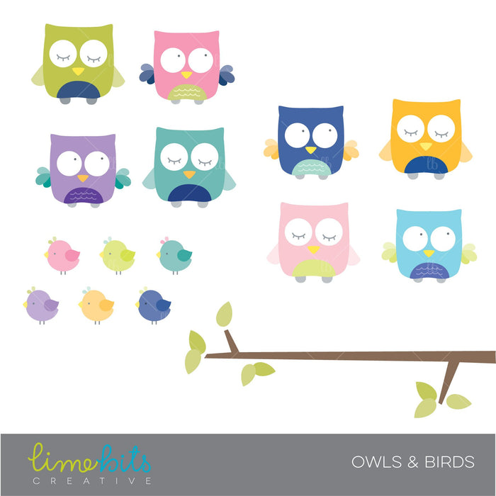 Owls and Birds Clipart  Lime Bits Creative    Mygrafico