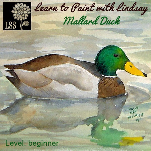 Learn to Paint: Mallard Duck Tutorial Lindsay's Stamp Stuff    Mygrafico