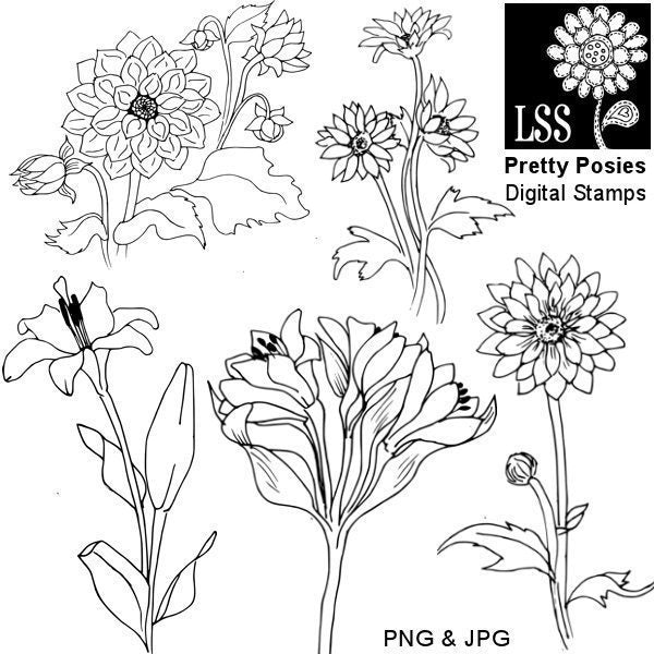 Pretty Posies Digital Stamps  Lindsay's Stamp Stuff    Mygrafico