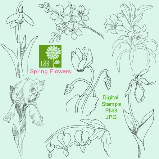 Spring Flowers Digital Stamps Digital Stamps Lindsay's Stamp Stuff    Mygrafico
