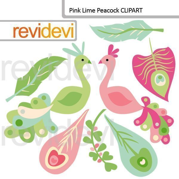 Pink Lime Peacock cliparts  Revidevi    Mygrafico