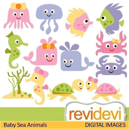 Baby Sea Animals  Revidevi    Mygrafico