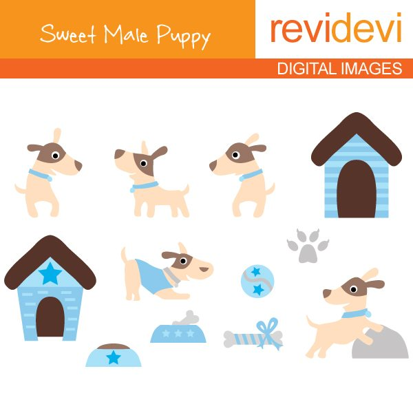 Sweet Male Puppy  Revidevi    Mygrafico