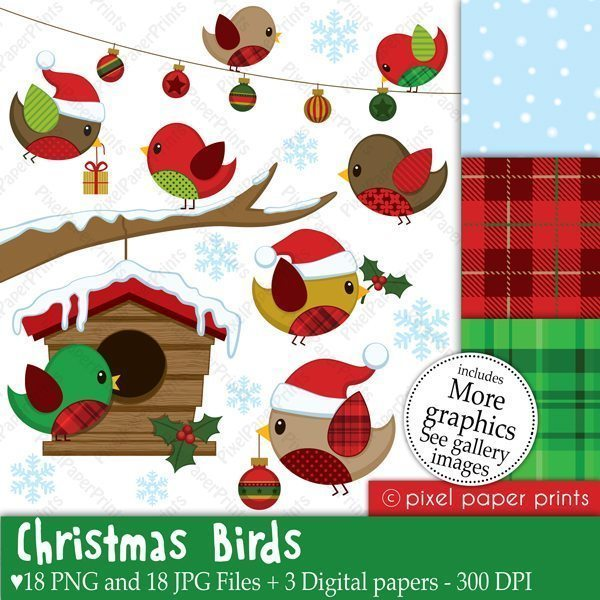 Christmas Birds Clipart & Digital Papers  Pixel Paper Prints    Mygrafico