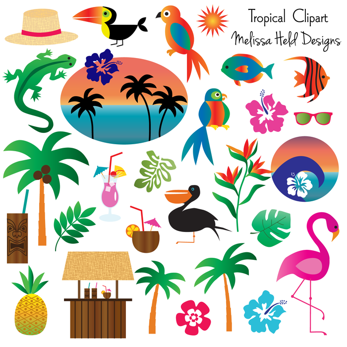 Tropical Clipart by Melissa Held Designs Clipart & Digital Paper Melissa Held Designs    Mygrafico