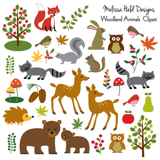Woodland Animals Clipart Clipart & Digital Paper Melissa Held Designs    Mygrafico
