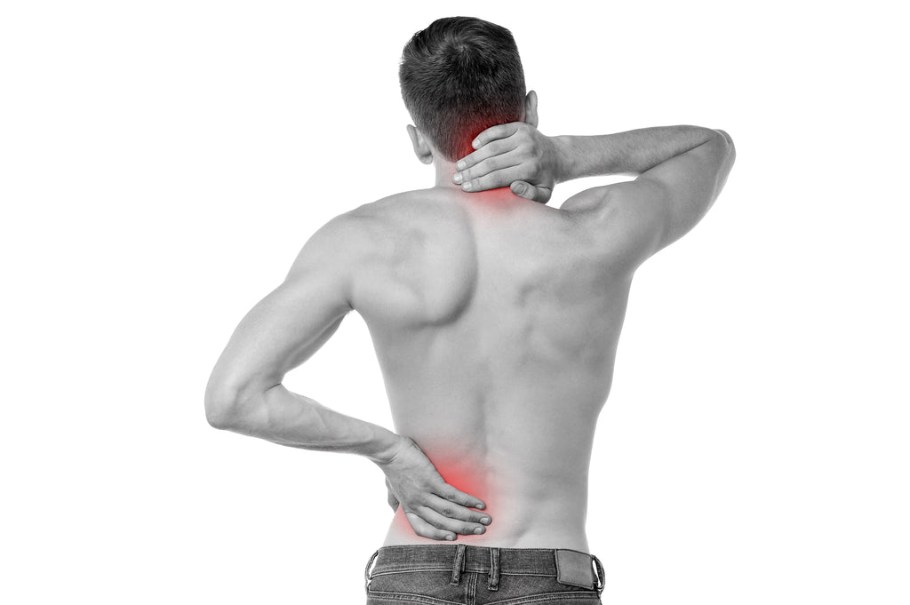 Can Turmeric help back pain?