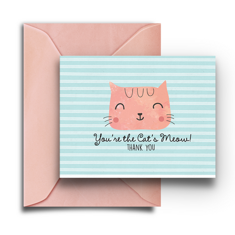 Cat's Meow Boxed Notes