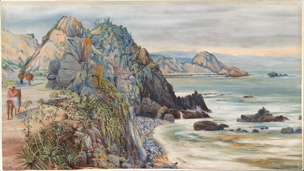 Detail of 24. Sea-shore near Valparaiso, Chili, 1880 by Marianne North