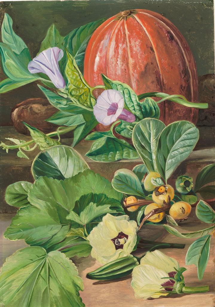 Detail of 29. Some fruits and vegetables used in Brazil, 1880 by Marianne North