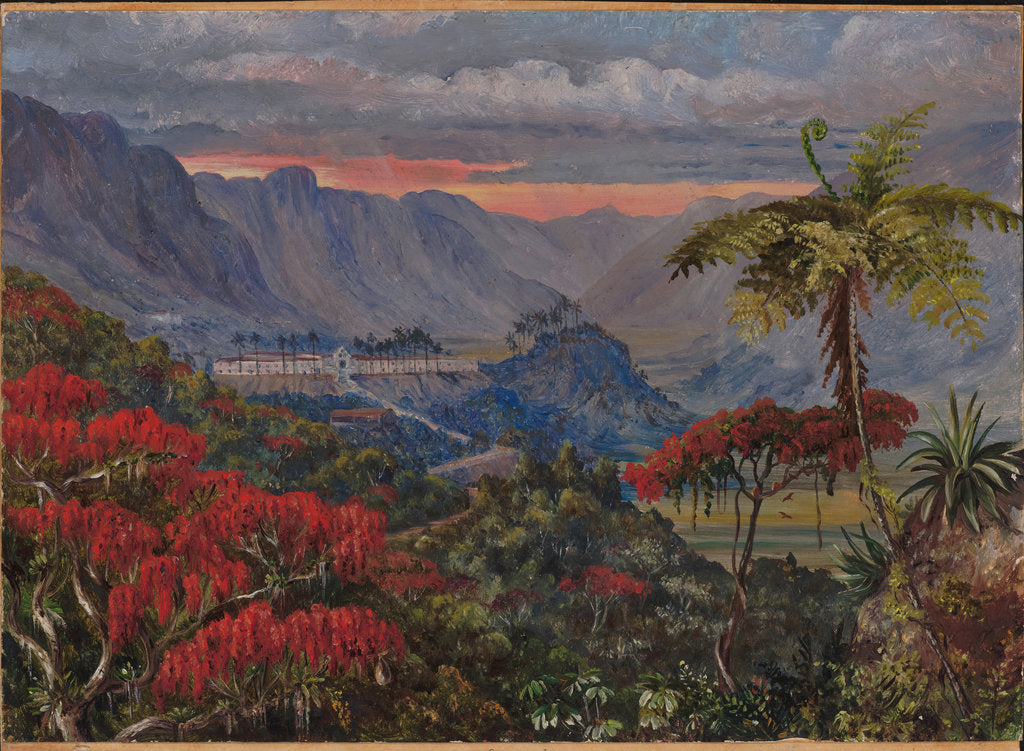 Detail of 35. View of the Jesuit college of Caracas, Minas Geraes, Brazil, 1880 by Marianne North