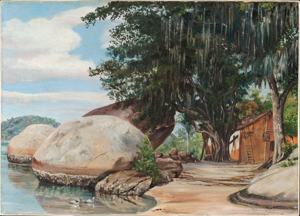 Detail of 40. Boulders, fisherman's cottage and tree hung with air plant, at Parquita, Brazil, 1880 by Marianne North
