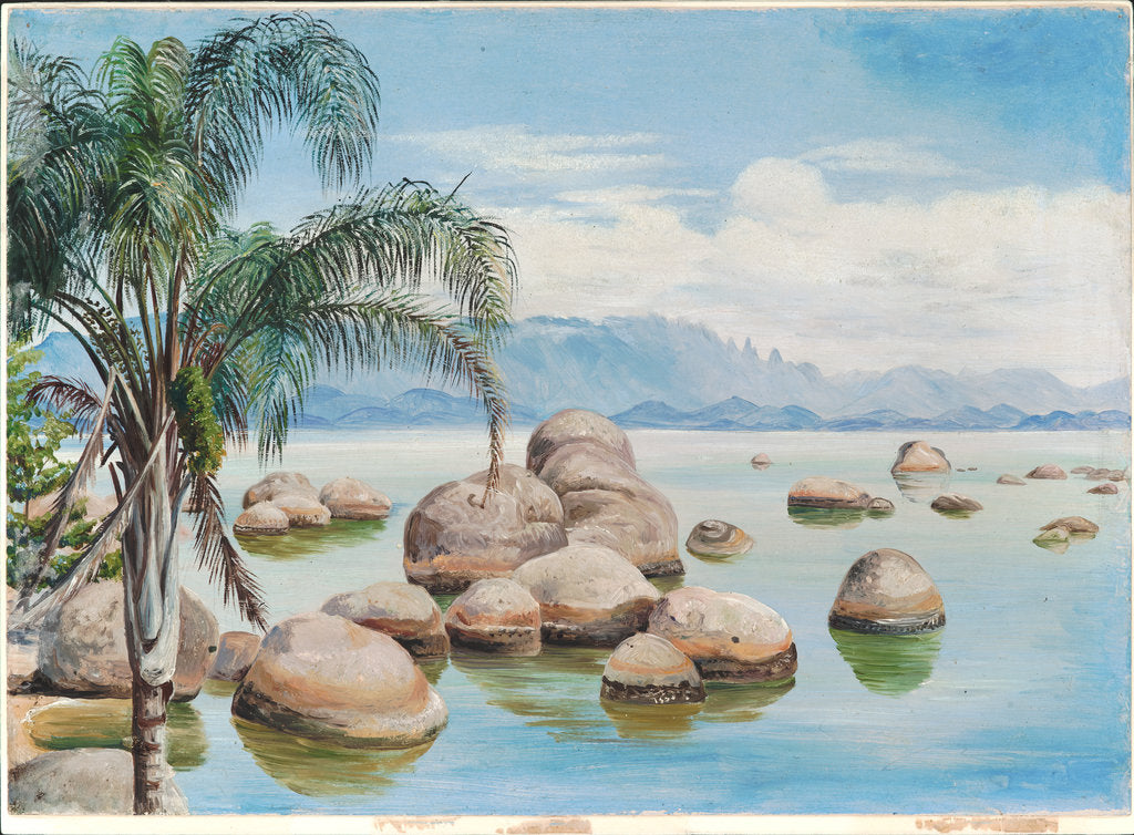 Detail of 48. Palm trees and boulders in the Bay of Rio, Brazil, 1880 by Marianne North