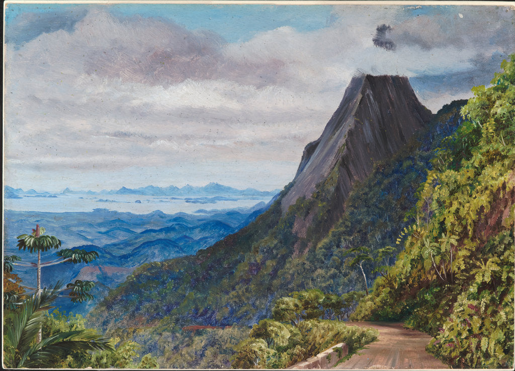 Detail of 61. Organ peak at Theresoplis and bay of Rio below, 1880 by Marianne North