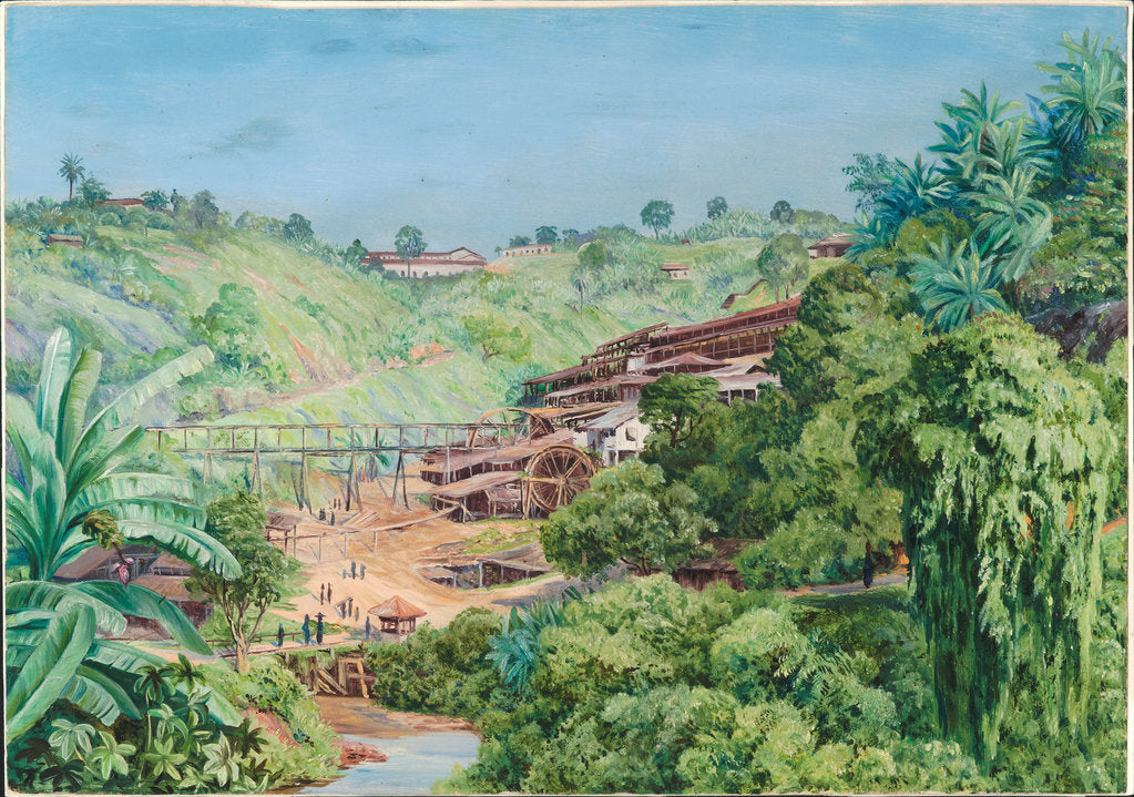 Detail of 79. View of the old gold works at Morro Velho, Brazil, 1880 by Marianne North