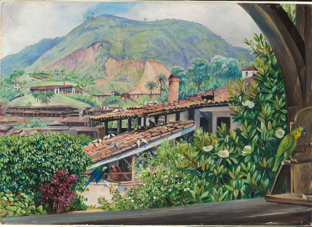 Detail of 95. View of the old gold works from the verandah at Morro Velho, Brazil, 1880 by Marianne North
