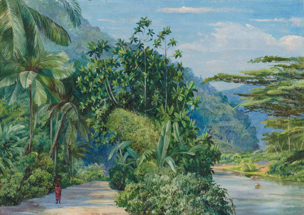 Detail of 116. The bog-walk, Jamaica, with bread fruit, banana, cocoanut, and other trees, 1973 by Marianne North