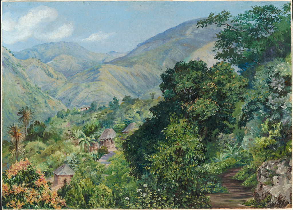 Detail of 133. Distant view of Newcastle, Jamaica, 1872 by Marianne North