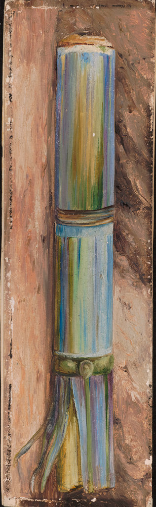 Detail of 135. A piece of sugar cane, 1870 by Marianne North