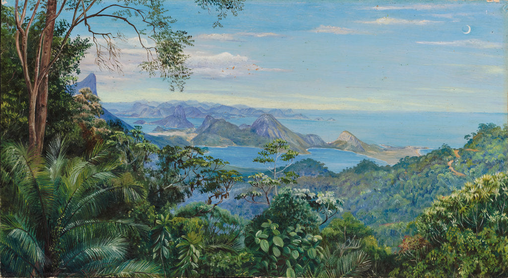 Detail of 138. View of the Bay of Rio and the Sugarloaf Mountain, Brazil, 1872- 1873 by Marianne North