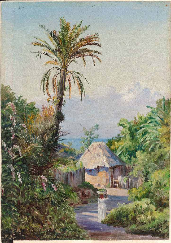 Detail of 157. Date palm and negro hut, near Craigton, Jamaica, 1872 by Marianne North
