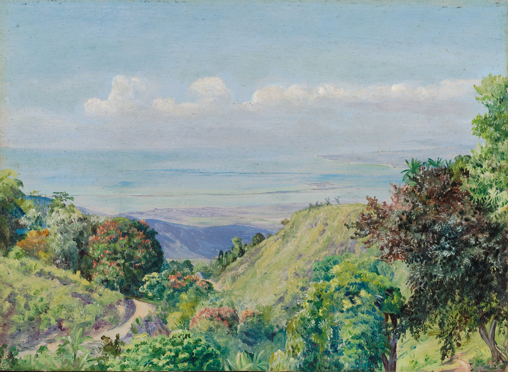 Detail of 161. View over Kingston and Port Royal from Craigton, Jamaica, 1872 by Marianne North