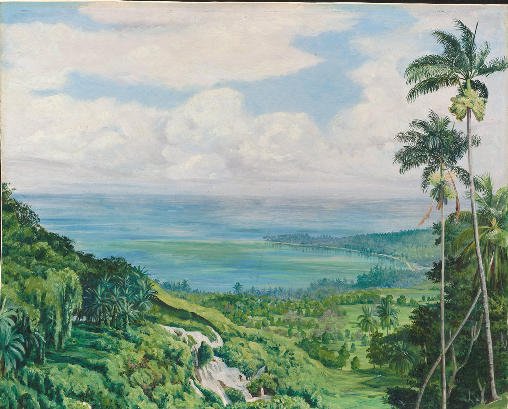 Detail of 164. View over Ochos Rios, Jamaica, 1872 by Marianne North