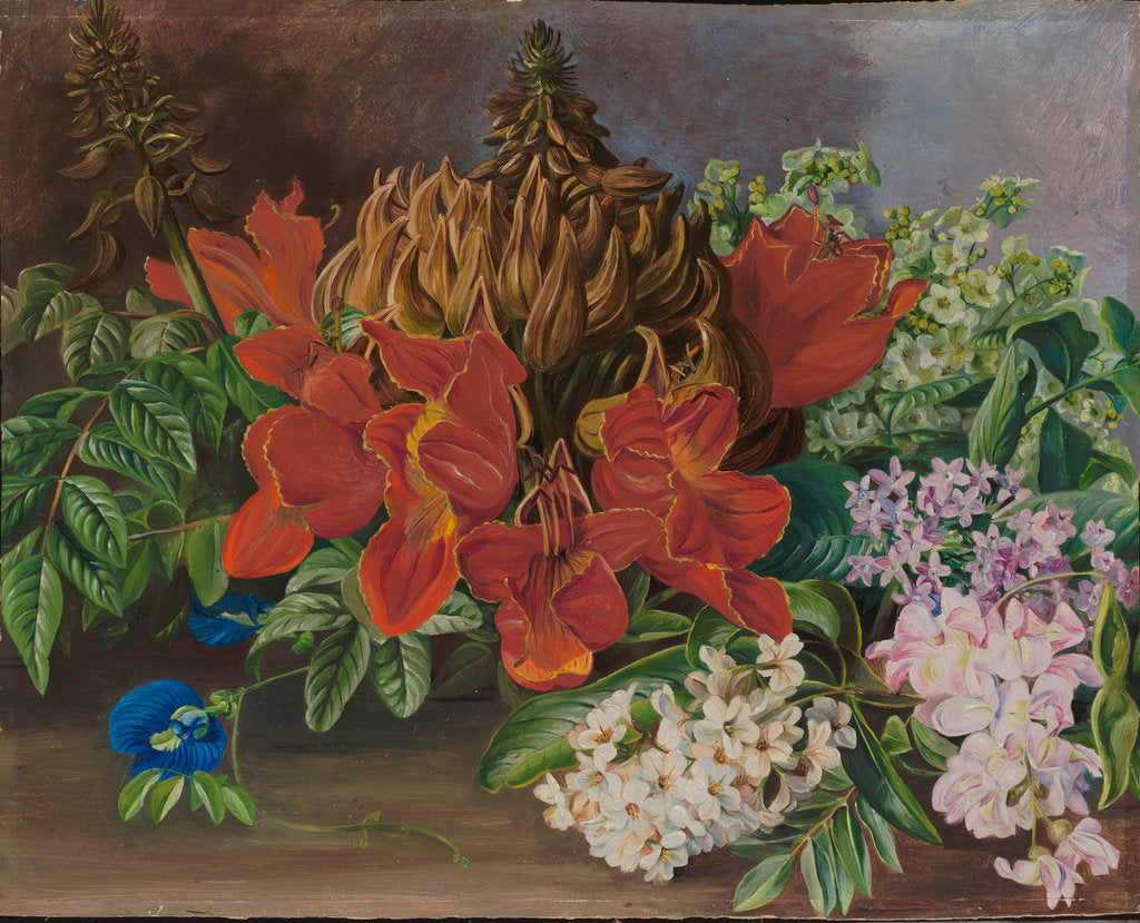 Detail of 165. Cultivated and wild flowers, Jamaica, 1872 by Marianne North
