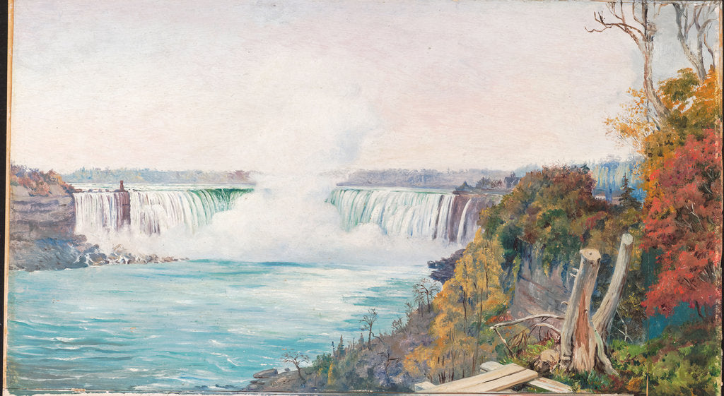 Detail of 187. View of both falls of Niagara, 1871 by Marianne North