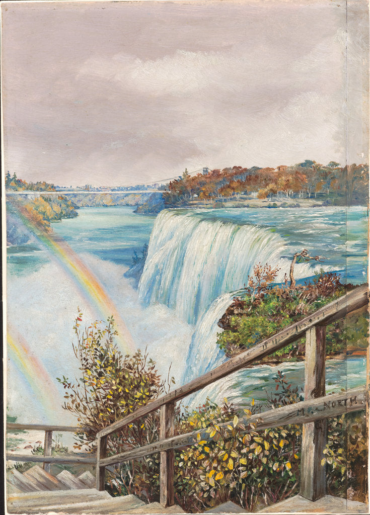 Detail of 193. The American fall from Pearl Island, Niagara, 1871 by Marianne North