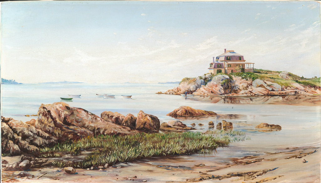 197. On the rocks, near West Manchester, Massachusetts, 1871 by Marianne North