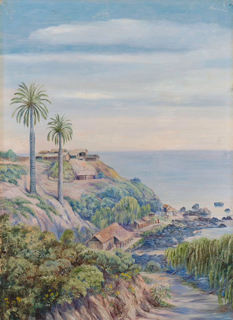 Detail of 17. View of Concon, Chili, with its two Palms by Marianne North