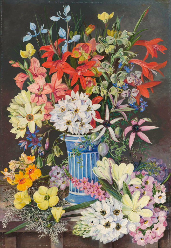 409. Old Dutch Vase and South African Flowers. by Marianne North