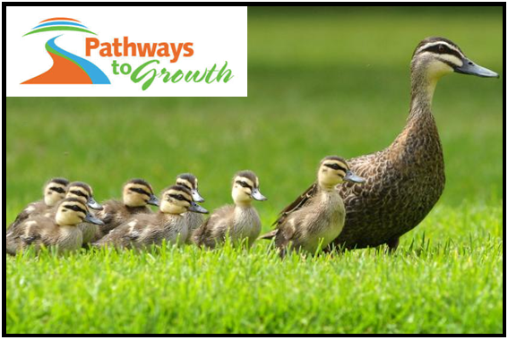 Grant Writing - Getting Your Ducks In A Row