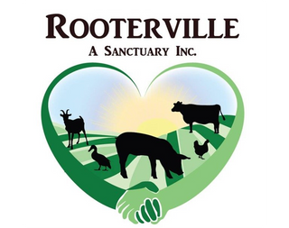 Give Back Nation serves Rooterville Animal Sanctuary